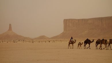 Photo of آینده پژوهی عربستان سعودی