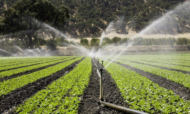 عارضه یابی وضعیت مصرف حامل های انرژی و آب در بخش كشاورزی