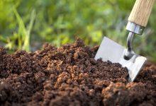بررسی چالش های مدیریت منابع خاک در کشور