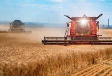 Photo of موانع و راهکارهای خودکفایی در تولید گندم