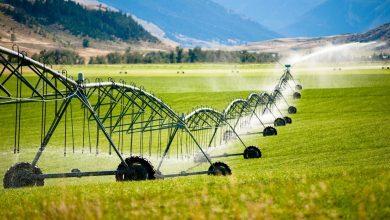 Photo of ارزیابی استراتژی های بهبود بهره وری آب در کشاورزی